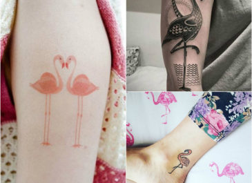 Interesting Things About Flamingo Tattoo You Must Know