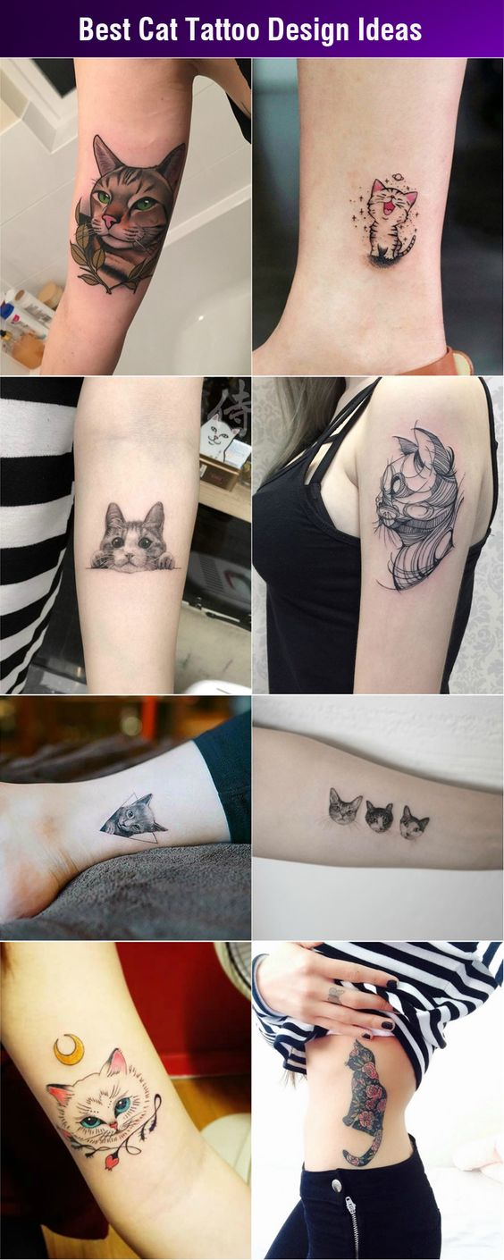 Cat Tattoo Design