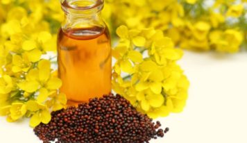 5 Ways to Use Mustard Oil for Hair for Incredible Results