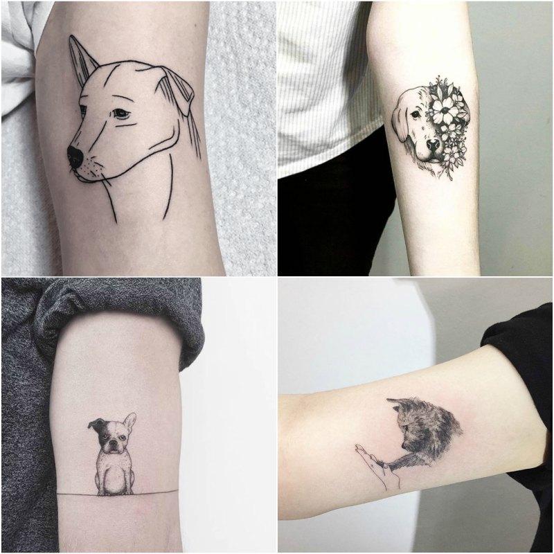 Dog Tattoo Design Ideas