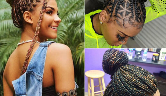Top 10 African Braids Hairstyle Ideas
